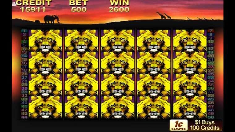50 Lions slot : notre avis sur cette machine à sous !