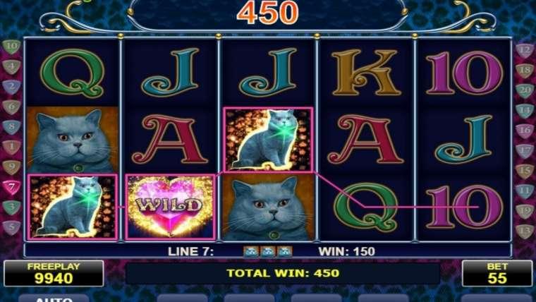 Machine à sous gratuite Cats : comment gagner le gros lot ?