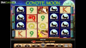 coyote moon precisions techniques