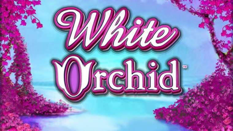 Machine à sous gratuite White Orchid : comment multiplier ses gains ?